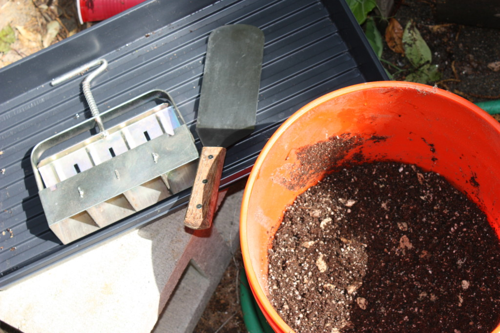 A cube press, spatula, potting mix, water and a tray.